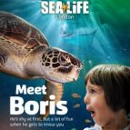 Sea Life London Standard Entry & Behind the Scenes Tour (Same Day)