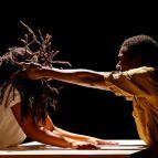 Danse Elargie - Dance Expanded