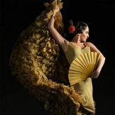 Gala Flamenca La Chana - Godess of Compas