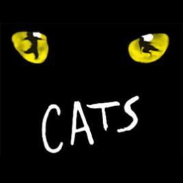 Cats: Edinburgh